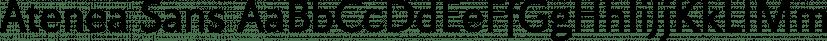 Atenea Sans font family by Eurotypo