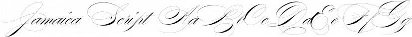Jamaica Script font family by vatesdesign