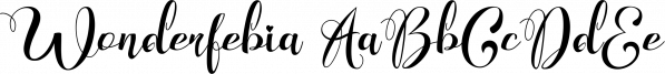 Wonderfebia font family by feydesign