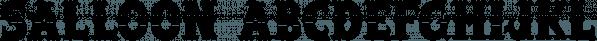 Salloon font family by Ingrimayne Type