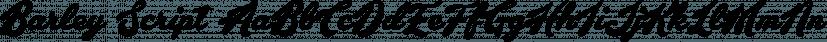 Barley Script font family by Måns Grebäck