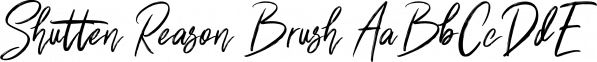 Shutten Reason Brush font family by feydesign
