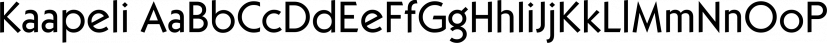 Kaapeli font family by Suomi Type Foundry