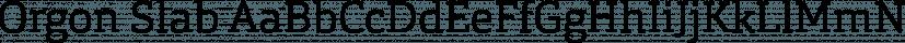 Orgon Slab font family by Hoftype