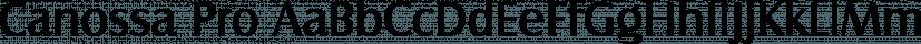 Canossa Pro font family by SoftMaker