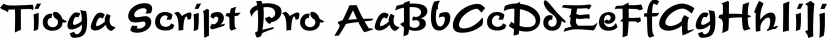 Tioga Script Pro font family by SoftMaker