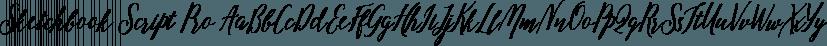 Sketchbook Script Pro font family by DimitriAna