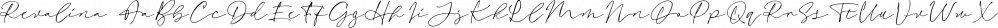 Revalina font family by Letterhend Studio
