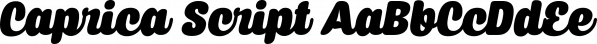 Caprica Script font family by Måns Grebäck