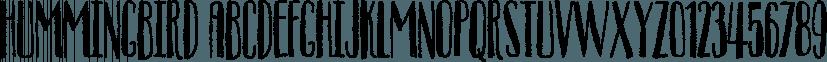 Hummingbird font family by Bogstav