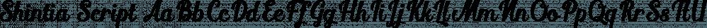 Shintia Script font family by Seniors Studio