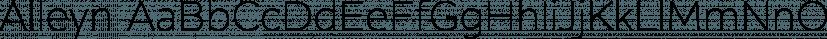 Alleyn font family by Aviation Partners
