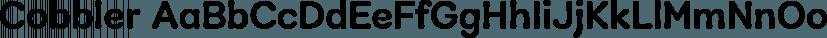 Cobbler font family by Juri Zaech