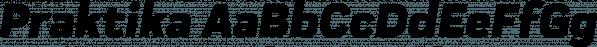 Praktika font family by Fenotype