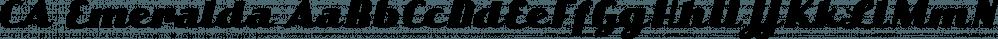 CA Emeralda font family by Cape Arcona Type Foundry