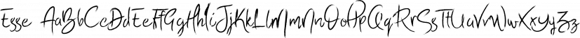 Esse font family by Incools Design Studio