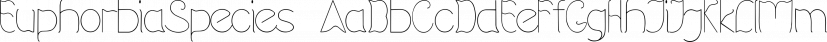 EuphorbiaSpecies font family by Intellecta Design