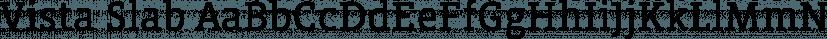 Vista Slab font family by Emigre