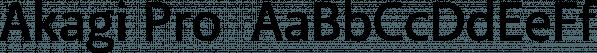 Akagi Pro  font family by Positype