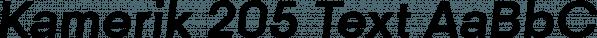 Kamerik 205 Text font family by Talbot Type