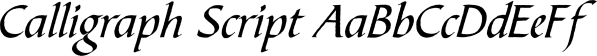 Calligraph Script font family by FontSite Inc.