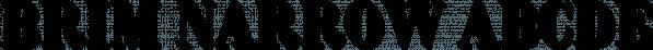 Brim Narrow font family by Jamie Clarke Type