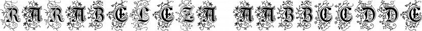 RaraBeleza font family by Intellecta Design
