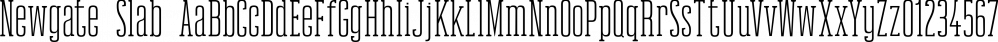 Newgate Slab font family by Uncle Avi