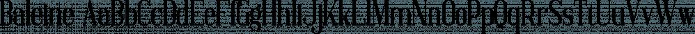 Baleine font family by VPcreativeshop