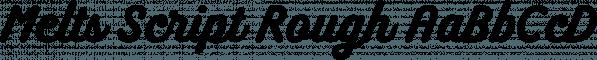 Melts Script Rough font family by Estudio Calderón