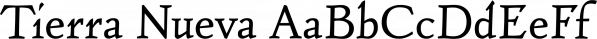 Tierra Nueva font family by FDI Type Foundry