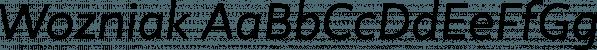 Wozniak font family by Untype