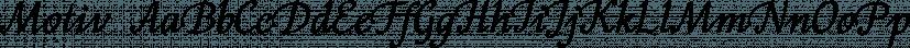 Motiv font family by ParaType