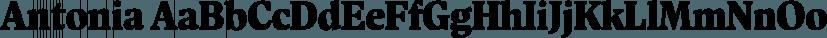 Antonia font family by Typejockeys