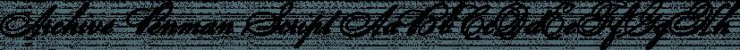 Archive Penman Script font family by ArchiveType