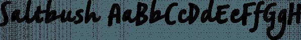 Saltbush font family by Estudio Calderón