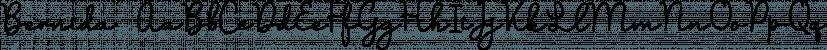 Bernida font family by Letterhend Studio