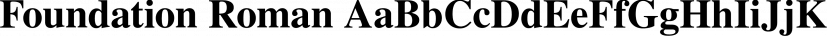 Foundation Roman font family by FontSite Inc.