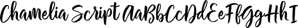 Chamelia Script font family by Area Type Studio