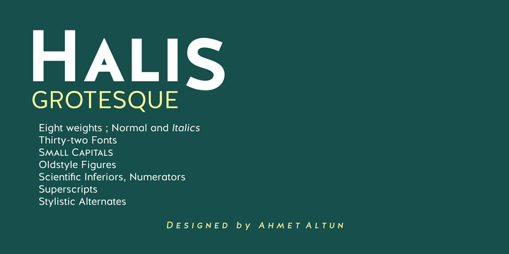Halis Grotesque font family by Ahmet Altun