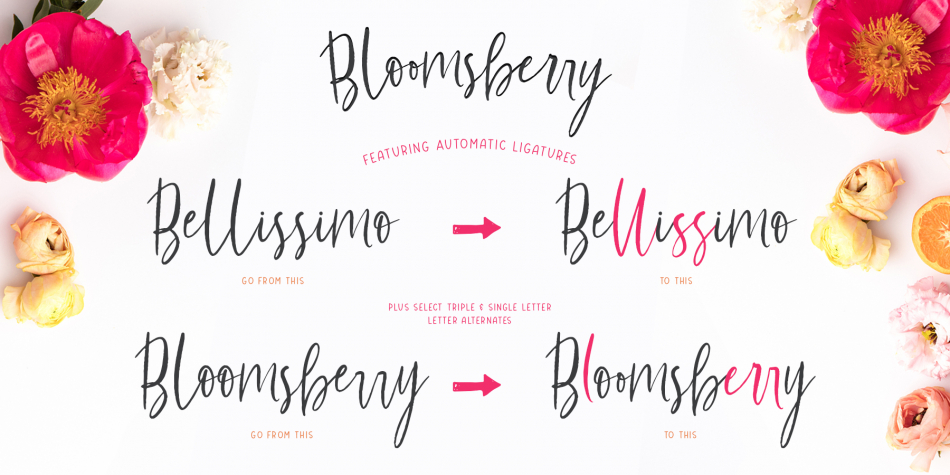 Download Bloomsberry Font Family