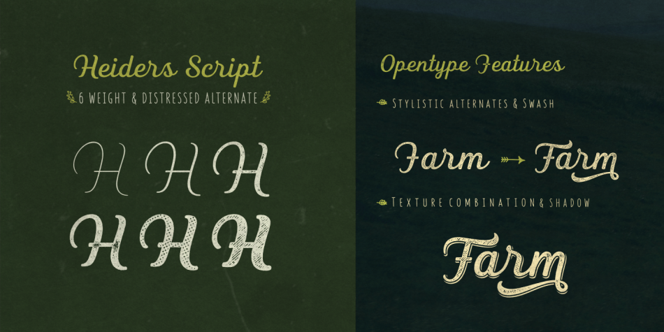 Download Heiders Font Family